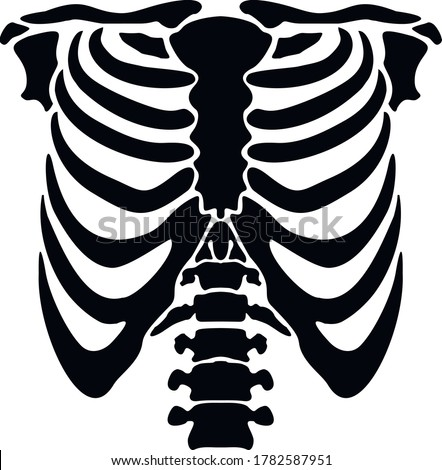 vector flat, thorax of skeleton,stencil Foto stock ©