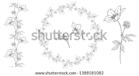 vector floral black and white composition set with anemone flowers #1388581082