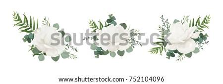 vector floral bouquet set of