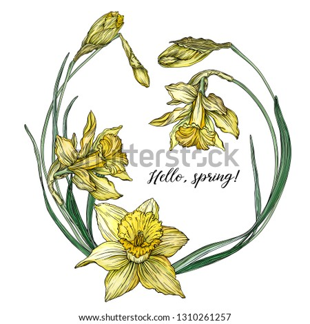 vector floral colored spring