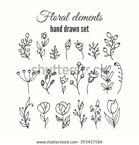 Vector floral decorative set. Herbs and wild flowers. Abstract hand sketched floral collection. Lovely flowers and leaves branches for invitation card.  #393437584