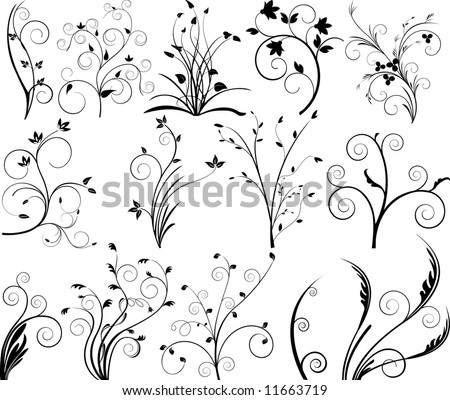 Vector floral elements for design