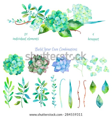 Vector floral set.Colorful floral collection with leaves and flowers, drawing watercolor.Colorful floral collection with flowers + 1 beautiful bouquet.Set of floral elements for your compositions.