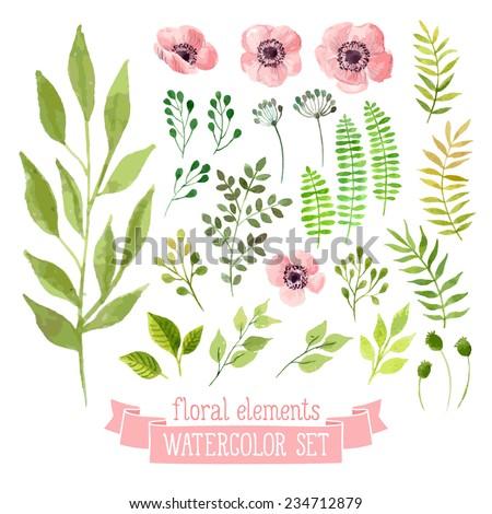 vector floral set colorful