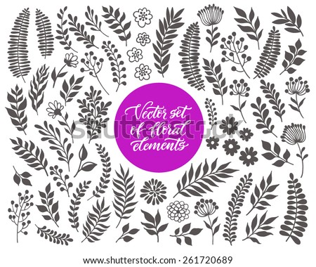 vector floral set graphic