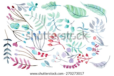 vector floral set watercolor