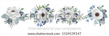 Vector floral set with leaves and flowers. Elements for your compositions, greeting cards or wedding invitations. Wedding anemones Stockfoto ©