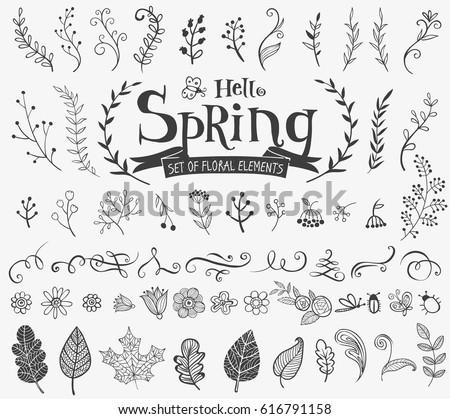 vector floral spring design
