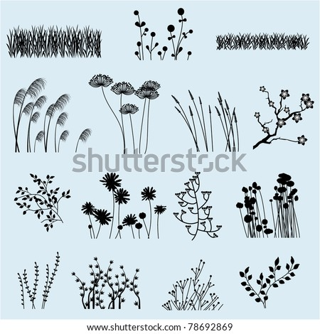 vector flower and grass
