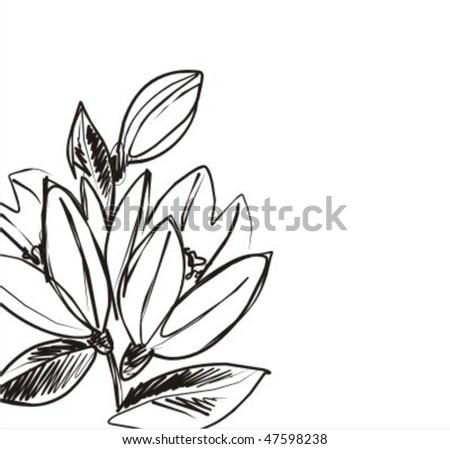VECTOR Flower background for design