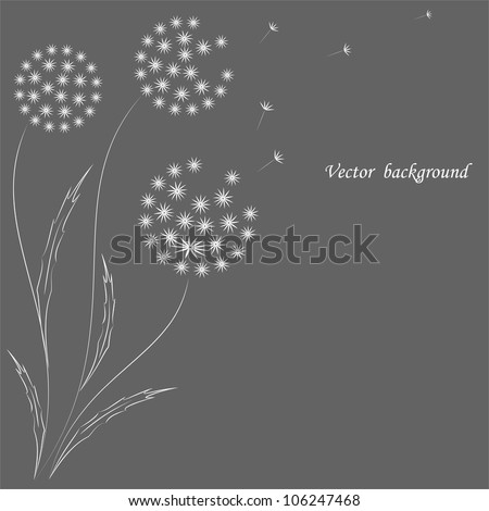 Vector flower background with dandelions.