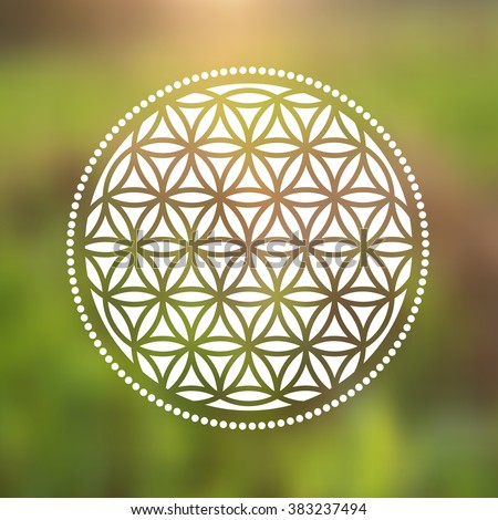 vector flower of life symbol on