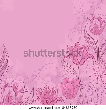Vector flower pink background, contours and silhouettes flowers tulips