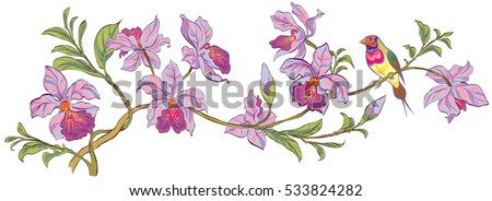 vector flowering branch of