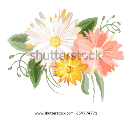vector flowers bouquet isolated