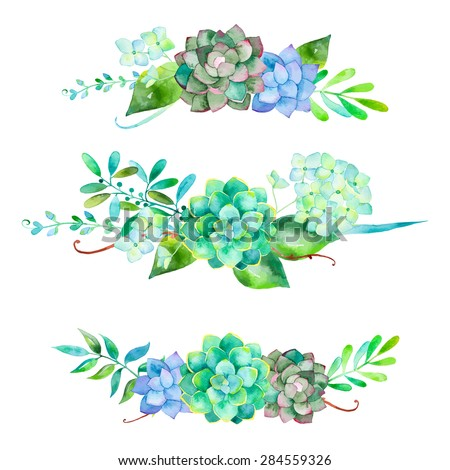 Vector flowers set. Colorful floral collection with leaves and flowers. 3 beautiful bouquet for your design with hydrangea , leaves, berries and succulents plants