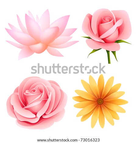 Vector flowers set of rose, lotus, daisy isolated on white