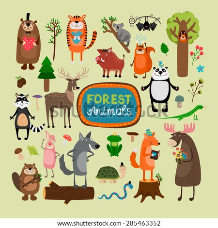 Vector forest animals set. Tiger koala bat squirrel panda raccoon deer lizard rabbit wolf beaver fox turtle snake frog