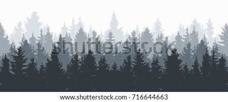 vector forest background. gray winter or spring woods, nature landscape with evergreen coniferous trees. morning woodland scene illustration