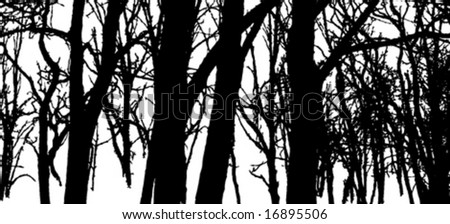 Vector forest silhouette