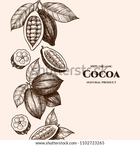 Vector frame with cocoa. Hand drawn. Vintage style