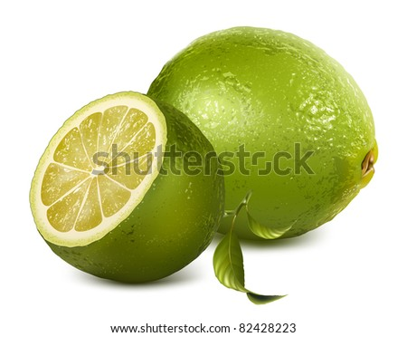Vector fresh lime
