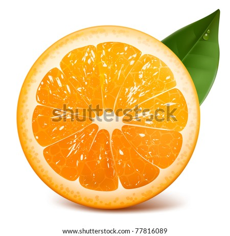 vector fresh ripe orange with