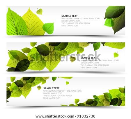 vector fresh spring horizontal