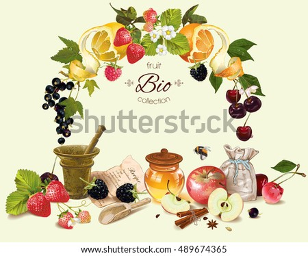 vector fruit and berry cosmetic
