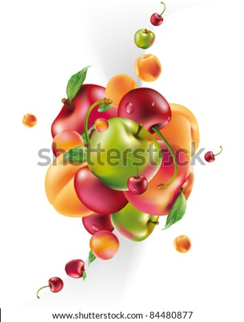 vector fruit explosion