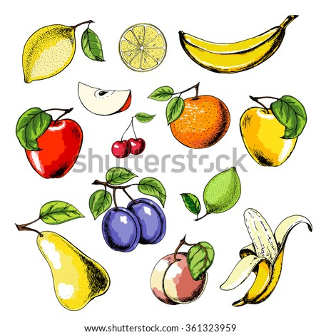 vector fruit set with apple ...