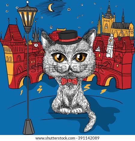vector funny british cat