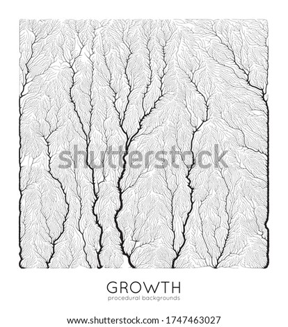 vector generative branch growth