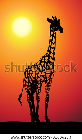 vector giraffe with transparent spots - stock vector