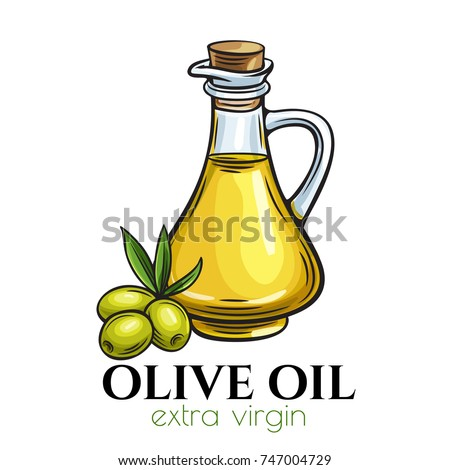 Vector glass bottle jug of olive oil and olives with leaves. Illustration in retro sketch style.