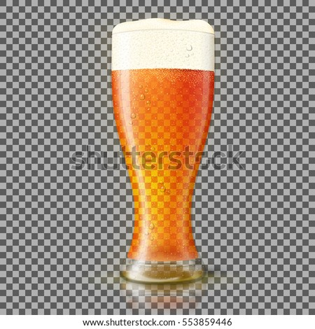 vector glass of fresh beer