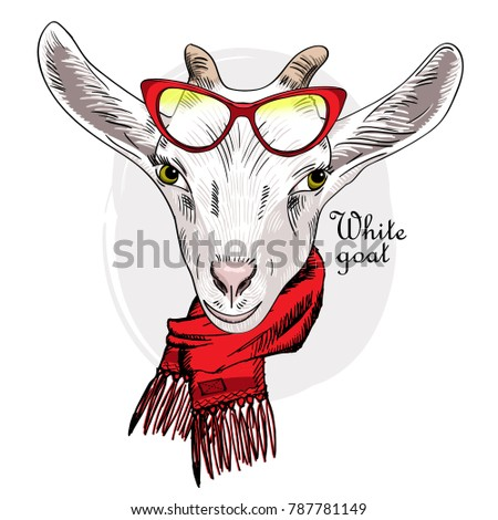 Vector goat with red glasses and red scarf. Hand drawn illustration of dressed goat.