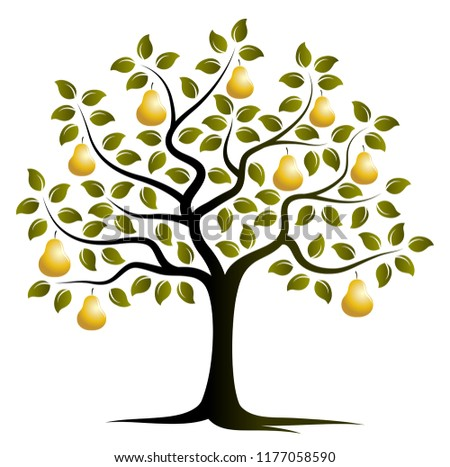 vector golden pear tree