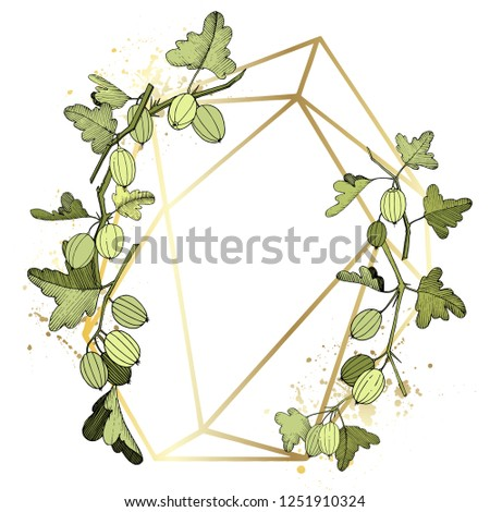 Vector Gooseberry branch. Green leaf. Plant botanical garden floral foliage. Frame golden crystal. Geometric polygon crystal polyhedron mosaic shape. Engraved ink art.
