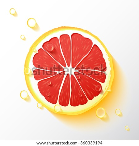 vector grapefruit slice  drops
