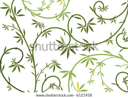 vector - graphic bamboo lines
