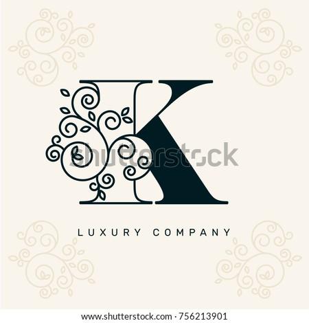 vector graphic elegant logotype