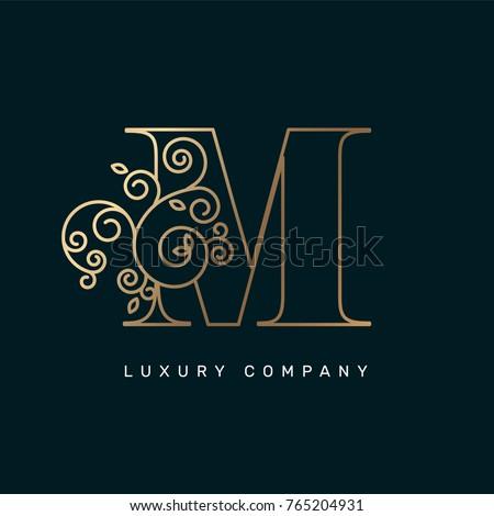 Vector graphic elegant logotype / Letter M