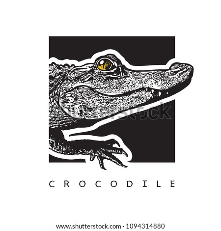Vector graphic image of American alligator (Florida gator). Black and white illustration of crocodilian reptile, logotype, clip art in engraving style, design element for logo or template.