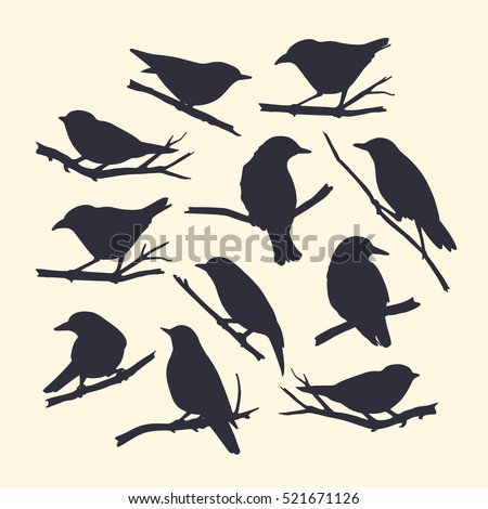 Vector graphic set of hand drawn birds sitting on branches. Dark silhouettes on light background.