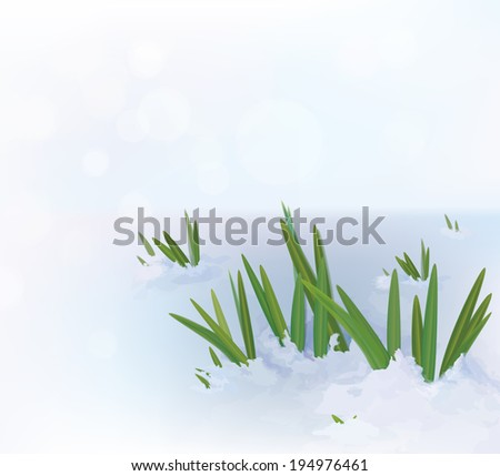 vector grass in snow