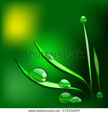 vector grass with dew drops on