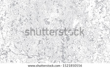 Vector grayscale  grunge pattern of old paint crackle with a lot of small cracks, paint chips and scratches. Cool texture of cracks, stains, scratches, splash, etc for print and design. EPS10. Foto stock ©