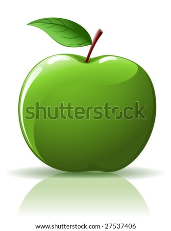 vector   green apple isolated