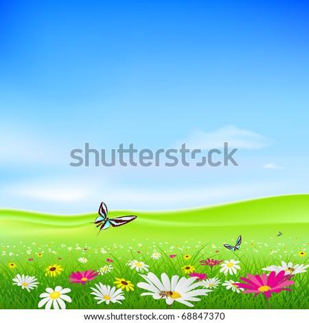 vector green field